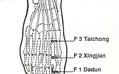 Digipuncture 3 F Tai chong