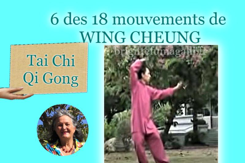 Tai Chi Qi Gong Maitre Wing Cheung
