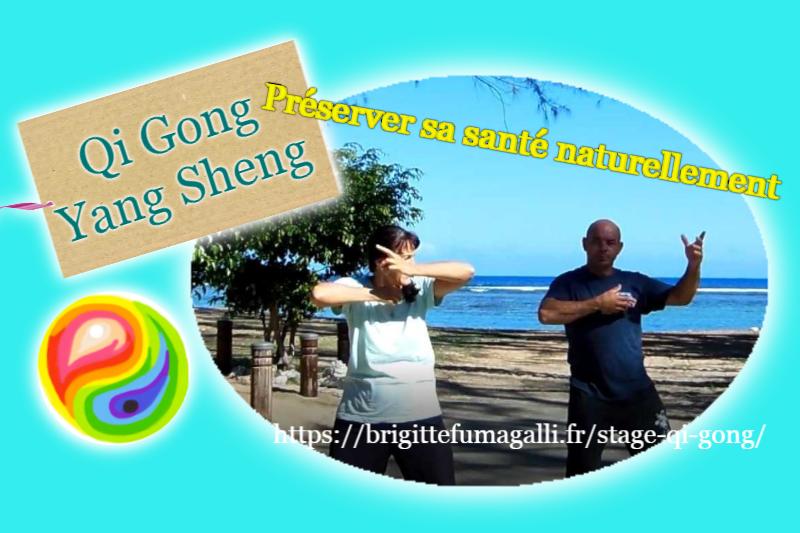 OFFRE  stage 10 séances – Qi Gong- Yang Sheng :